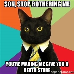 Business Cat - son, stop bothering me you're making me give you a death stare