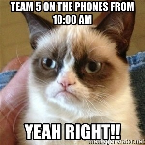 Grumpy Cat  - Team 5 on the phones from 10:00 am Yeah right!!