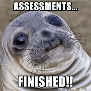 Awkward Seal - Assessments... Finished!!