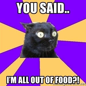 Anxiety Cat - You said.. I'm all out of food?!