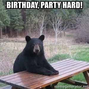 Patient Bear - Birthday, party hard!