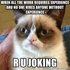 Grumpy Cat  - when all the work requires experience and no one hires anyone without experience r u joking