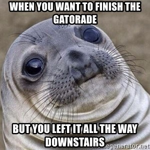 Awkward Seal - when you want to finish the gatorade but you left it all the way downstairs