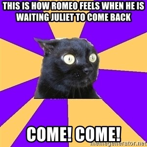 Anxiety Cat - This is how Romeo feels when he is waiting Juliet to come back Come! Come!