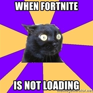 Anxiety Cat - when fortnite is not loading