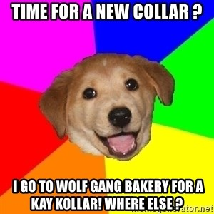 Advice Dog - Time for a new collar ?  I go to Wolf gang bakery for a Kay Kollar! Where else ?