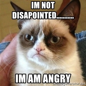 Grumpy Cat  - Im not disapointed........... Im am angry