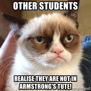 Grumpy Cat 2 - OTHER STUDENTS REALISE THEY ARE NOT IN ARMSTRONG'S TUTE!