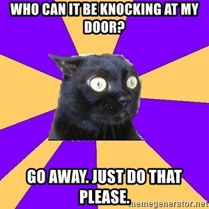 Anxiety Cat - WHO CAN IT BE KNOCKING AT MY DOOR? GO AWAY. JUST DO THAT PLEASE.