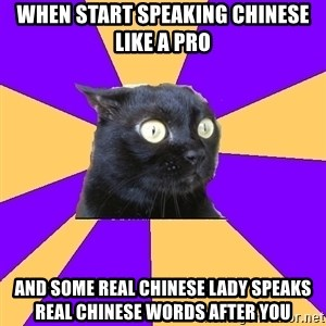 Anxiety Cat - When start speaking chinese like a pro And some real Chinese lady speaks real Chinese words after you