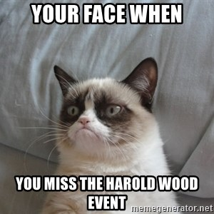 Grumpy cat good - your face when you miss the harold wood event