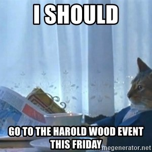 Sophisticated Cat - i should go to the harold wood event this friday