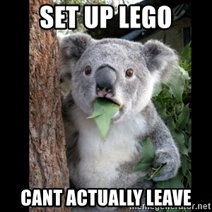 Koala can't believe it - Set up LEGO CANT ACTUALLY LEAVE