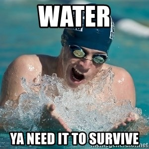 OMG WATER - water ya need it to survive
