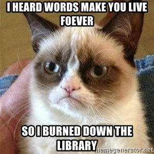 Grumpy Cat  - I heard words make you live foever So I burned down the library