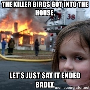 Disaster Girl - The killer birds got into the house, let's just say it ended badly.