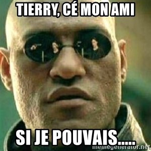 What If I Told You - Tierry, cé mon ami si je pouvais.....