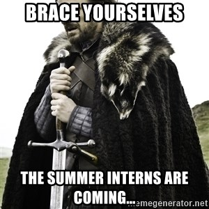 Brace Yourself Meme - BRACE YOURSELVES THE SUMMER INTERNS ARE COMING...