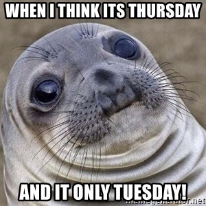 Awkward Seal - when i think its thursday  and it only tuesday!
