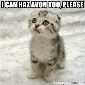 Can haz cat - I can haz avon too, please