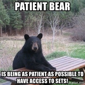 Patient Bear - Patient Bear is being as patient as possible to have access to Sets!