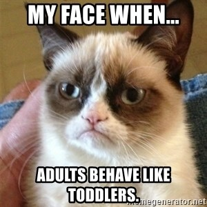 Grumpy Cat  - My face when... adults behave like toddlers.