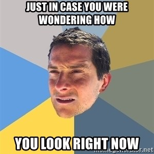 Bear Grylls - just in case you were wondering how you look right now