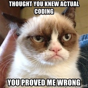 Grumpy Cat 2 - thought you knew actual coding you proved me wrong
