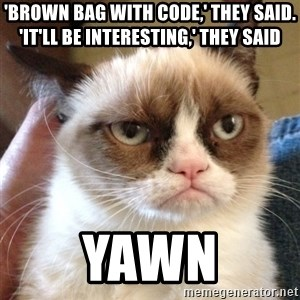 Grumpy Cat 2 - 'brown bag with code,' they said. 'it'll be interesting,' they said yawn