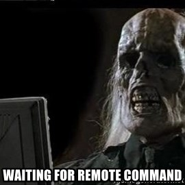 OP will surely deliver skeleton - Waiting for remote command