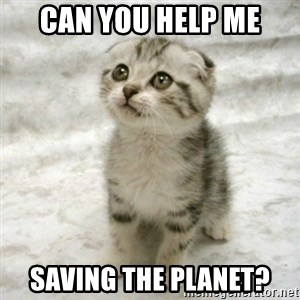 Can haz cat - Can you help me saving the planet?