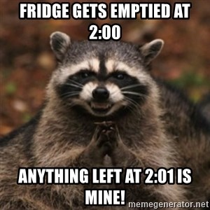 evil raccoon - FRIDGE GETS EMPTIED AT 2:00 ANYTHING LEFT AT 2:01 IS MINE!