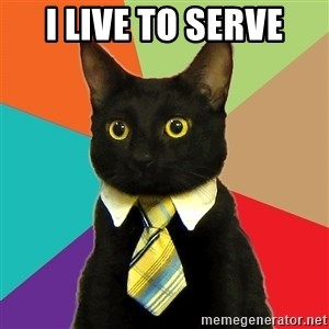 Business Cat - i live to serve