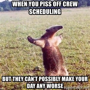Anteater - When you piss off crew scheduling But they can't possibly make your day any worse