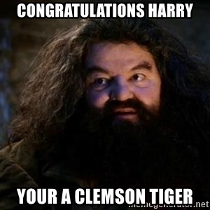 Yer A Wizard Harry Hagrid - Congratulations Harry Your a clemson tiger