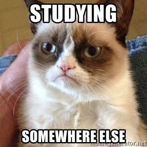 Grumpy Cat Face - studying  somewhere else