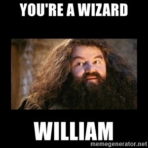 You're a Wizard Harry - You're a Wizard William