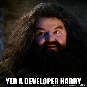 Yer A Wizard Harry Hagrid - yer a developer harry