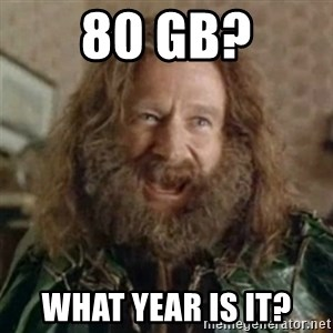 What Year - 80 Gb? What year is it?