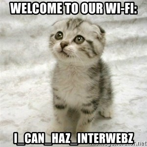 Can haz cat - Welcome to our Wi-fi: I_Can_haz_Interwebz