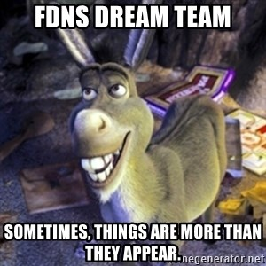 Donkey Shrek - FDNS Dream Team Sometimes, things are more than they appear.