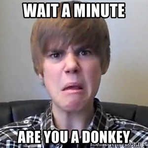 Justin Bieber 213 - Wait a minute Are you a donkey