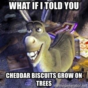 Donkey Shrek - WHAT IF I TOLD YOU CHEDDAR BISCUITS GROW ON TREES