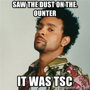 Shaggy. It wasn't me - Saw the dust on the. Ounter It was TSC