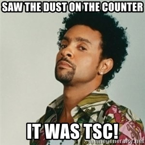 Shaggy. It wasn't me - Saw the dust on the counter It was TSC!