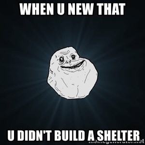 Forever Alone - when u new that  u didn't build a shelter