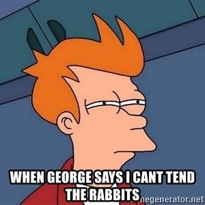 Futurama Fry - When george says I cant tend the rabbits