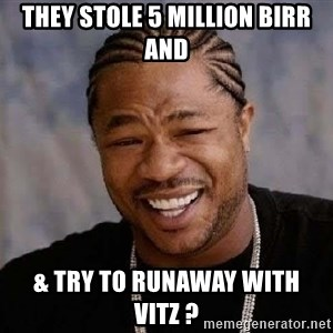 Yo Dawg - they stole 5 million birr  and & try to runaway with vitz ?