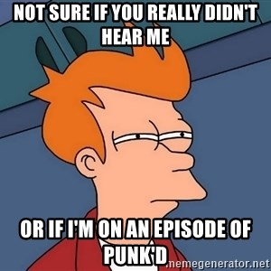Futurama Fry - Not sure if you really didn't hear me Or if I'm on an episode of punk'd