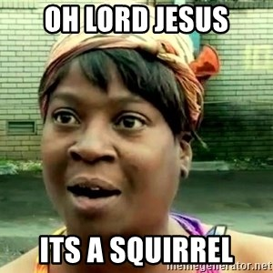 oh lord jesus it's a fire! - Oh lord jesus Its a squirrel